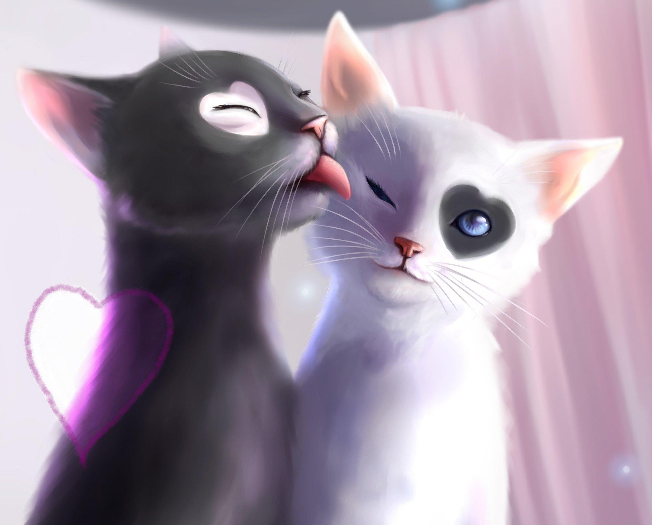 Black White Cat Love Heat Kiss Art Wallpaper